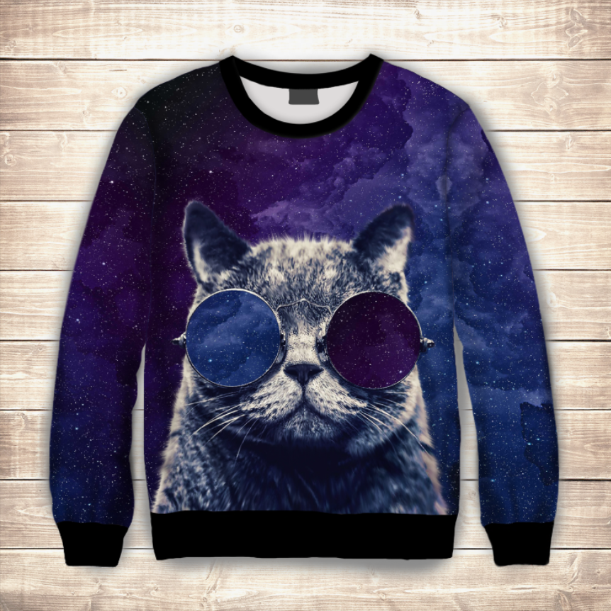 Світшот Кіт в окулярах